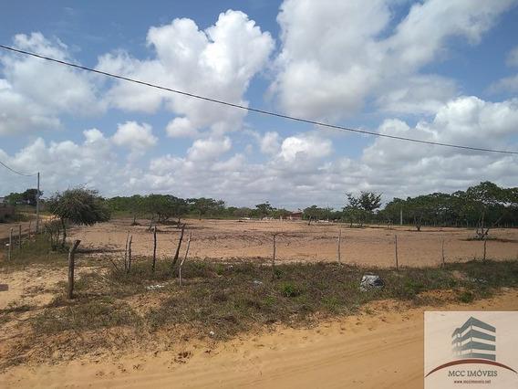 Terreno A Venda De 7.892m² A 300m Da Br 101 Em São José De Mipibu