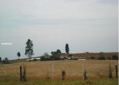 Fazenda Para Venda Em Itapetininga, Centro - 636