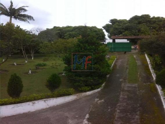 Ref 5389 Sitio Em Cotia Dois Terrenos Total 2.800 M2 Casa Principal E Caseiro! - 5389