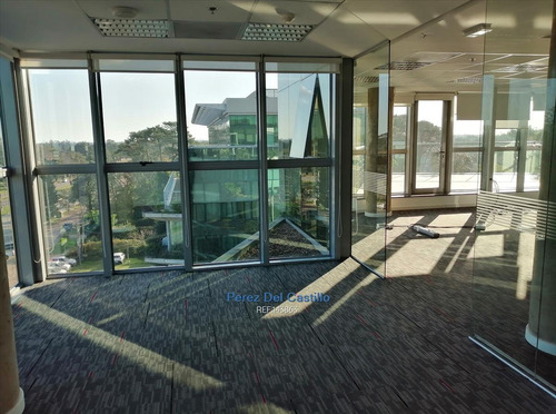 Alquiler Oficina Penhouse Edificio Corporativo Vista