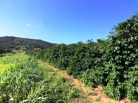 Sítio Com 2 Quartos Para Comprar No Zona Rural Em Nepomuceno/mg - Nep871