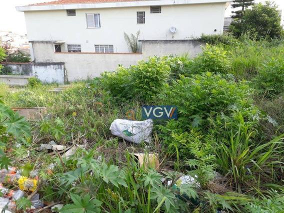 Terreno Residencial À Venda, Vila Santa Catarina, São Paulo. - Te0083