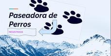 Paseadora De Perros Registrada