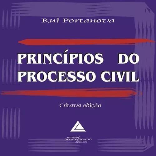 Princípios Do Processo Civil