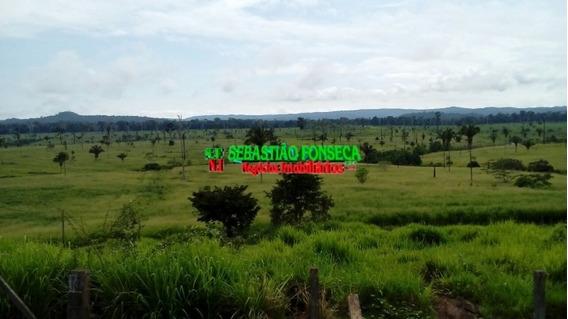 Fazenda Com 2.700 Alqueires Próximo A São João Do Araguaia - 957