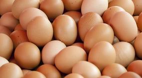Ovos Galados De Galinhas Caipiras