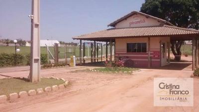 Casa Residencial Para Venda E Locação, Nova Porto Xv, Bataguassu - Ca1979. - Ca1979