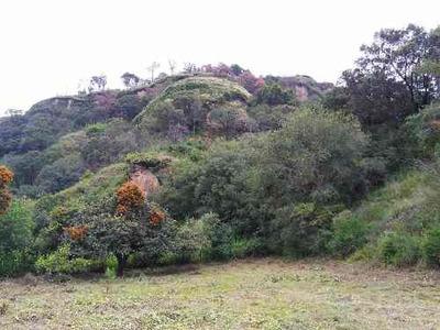 Venta De Terreno Plano A Pie De Cerro En Santo Domingo Ocotitlán, Tepoztlán, Mor.