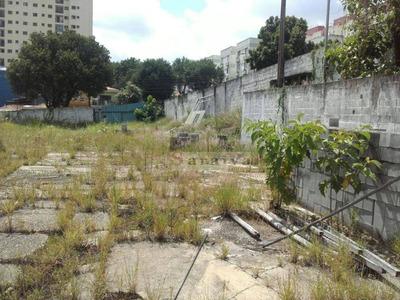 Terreno Comercial Para Locação, Taboão, São Bernardo Do Campo. - Te0001