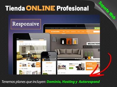 Diseño De Tiendas Online Y Páginas Web Autoadministrables Ve