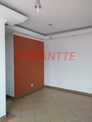 Apartamento Em Tucuruvi - São Paulo, Sp - 322800