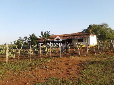 Sitio - Fazenda Serra Preta - Ref: 6861 - V-818925