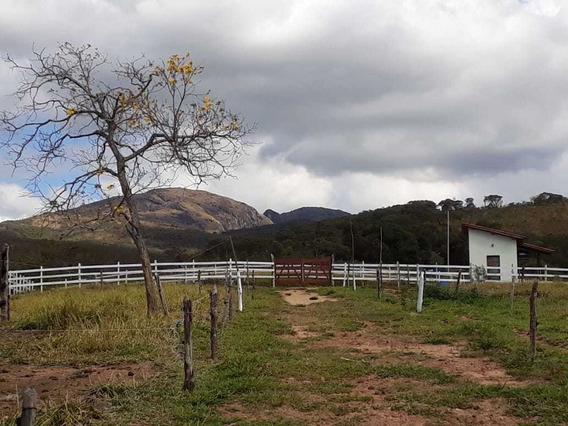 Sítio 3,84 Hectares Em Baependi Sul De Minas. Vista Maravilhosa Das Montanhas Da Serra Da Mantiqueira - 483
