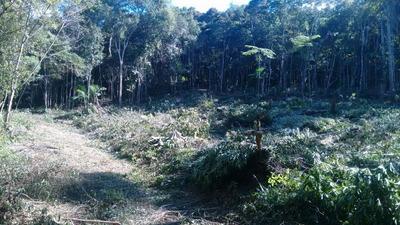 Lindo Terreno 50% Desmatado,poço, Aberto Propostas/ref:04620