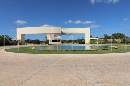 Terreno En Venta En Rio En Cancun
