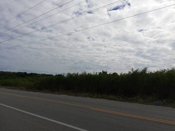 Se Vende Terreno En Carretera Carmen Puerto Real Km 14+500, Rancho Camboya