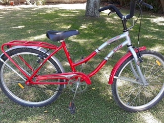 Bicicleta De Mujer Rodado 24