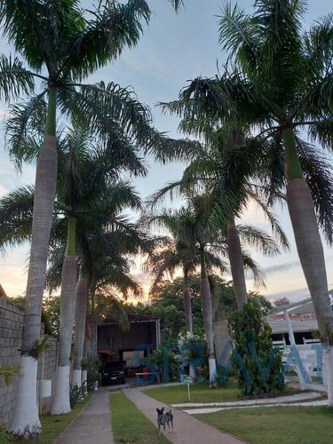 Imagem 1 de 19 de Chacara - Ch00091 - 69547603