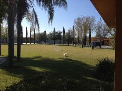 Quinta Linares