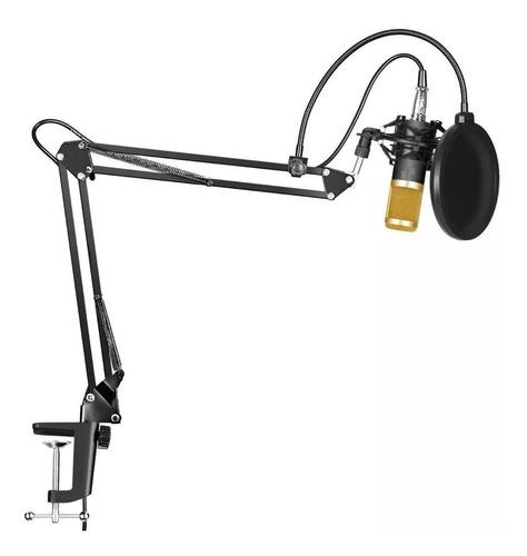 Microfono Condensador Bm800 Brazo Soporte Estudio Antipop