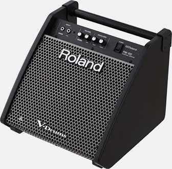 Cubo Monitor Roland Pm 100