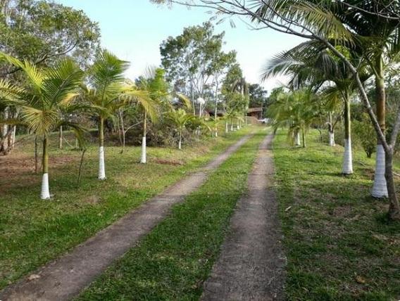Terreno Residencial À Venda, Recanto Week End (santa Luzia), Ribeirão Pires. - Te0655