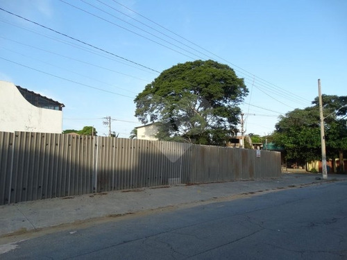 Terreno Alto De Pinheiros - 353-im317426
