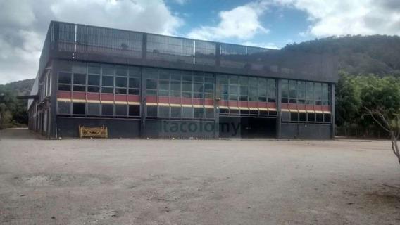 Ref: 2824 Galpão Para Alugar Em São Roque Com 4.500 M² Próxi - 2824