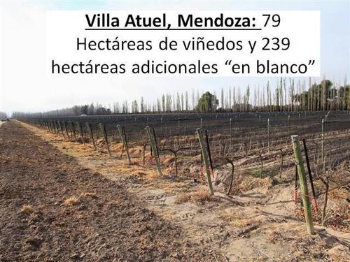Campo En Venta San Rafael Mendoza