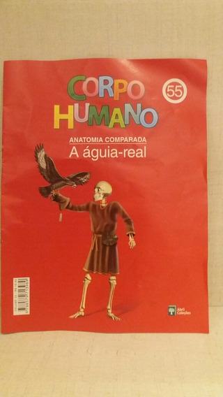 Fascículo Corpo Humano Abril Cultural Edição 55