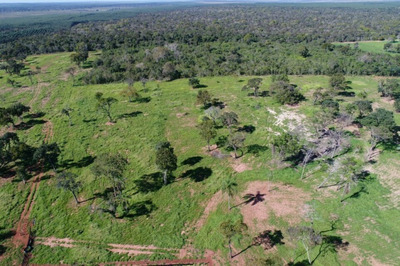Fazenda A Venda Em Campo Grande - Ms (dupla Aptidão) - 792