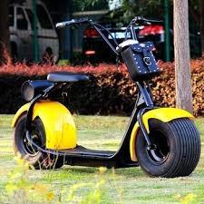 Scooter Eléctrico De 1000w
