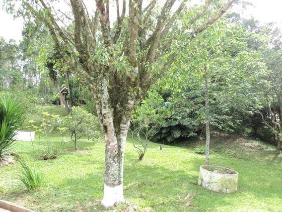 Chácara Em Chácara Recanto Verde, Cotia/sp De 400m² 4 Quartos À Venda Por R$ 550.000,00 - Ch321824