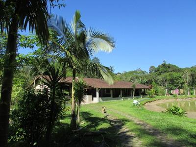 Sitio Sede/lago/piscina/nascente/ac/troca Litoral/ref:04746