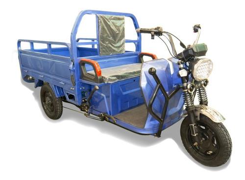Triciclo Electrico Soporta 600 Kilos 1250000