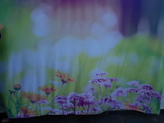 Fundo Fotográfico Floral Pronta Entrega