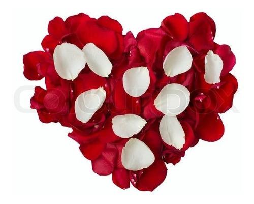 Imagem 1 de 6 de Mil Pétalas De Rosas Artificiais Mistas Vermelho E Branco
