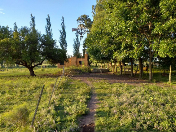 Campo En Venta En Verónica - Punta Indio