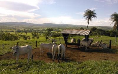Fazenda Com 36 Alqueires Em Brasília Df