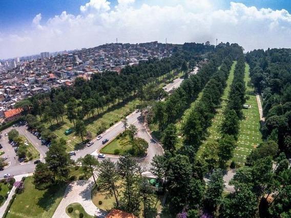 Jazigo 4 Gavetas - Cemitério Jardim Da Colina/sbc Sem Uso