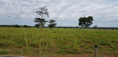 Fazenda A Venda Em Lagoa Da Confusão - To ( Soja ) - 702