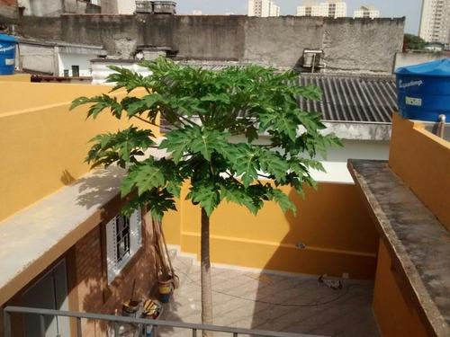 Casa À Venda, 250 M² Por R$ 750.000,00 - Rio Pequeno - São Paulo/sp - 14642