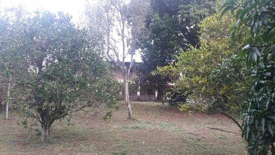Chácara Com Casa 3 Quartos, Sala Cozinha, Varanda, Pomar