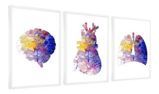 Quadro Decorativo Medicina Anatomia Coração Consultório