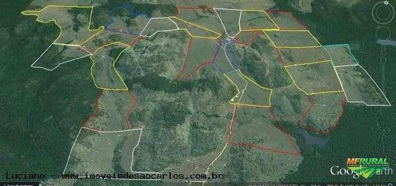 Fazenda Para Venda Em Vila Rica, Área Rural - Wf1_1-817938