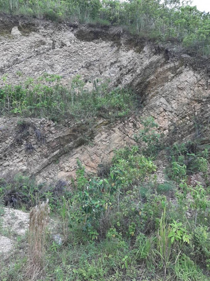 Terreno En Venta En El Hatillo Altos De Paramillo