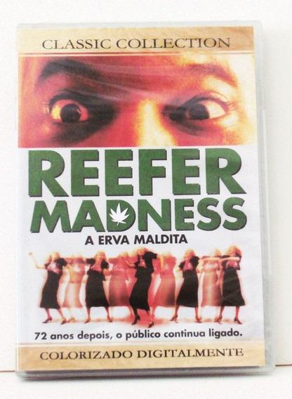 Dvd Reefer Madness A Erva Maldita - Original, Novo E Lacrado