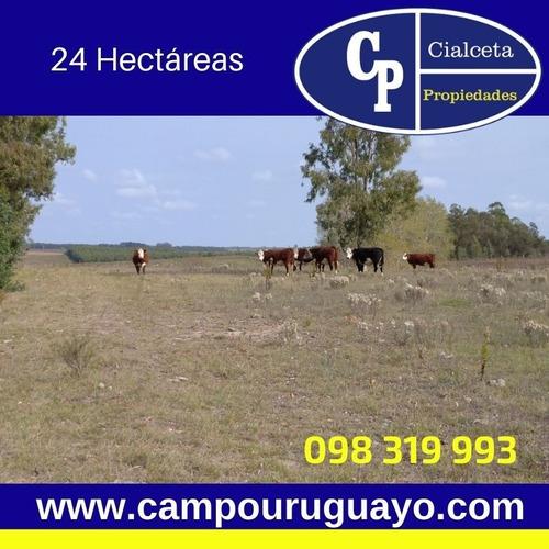 Campo Con Casa A 90 Km De Montevideo