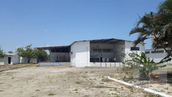 Galpão No Eusébio Para Locação,com Toda Estrutura De Pátio, Escritórios, Galpões, Vestiário E Refeitório - Ga0103