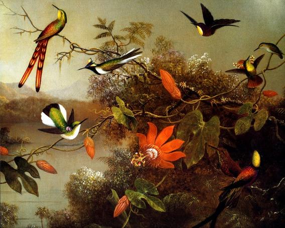 Beija-flor Flores Lago Árvore Galhos Heade Na Tela Repro